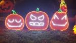Citrouilles qui chantent pour Halloween light show