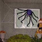 Toile d'araignée géante en corde